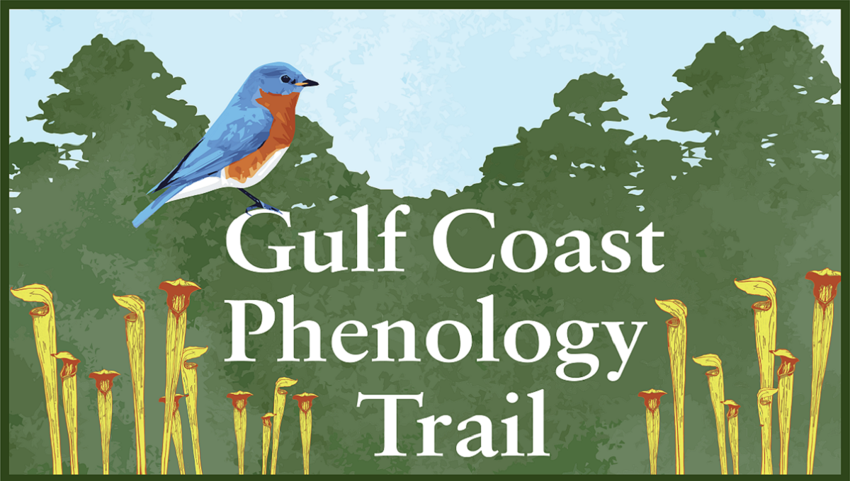 Logo shows Eastern Bluebird and pitcher plants