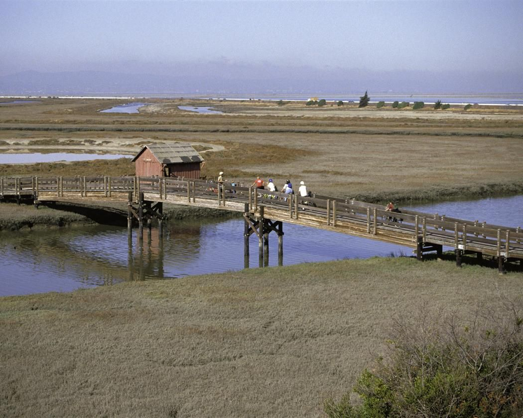 Visitor Center at Don Edwards San Francisco Bay National Wildlife Refuge
